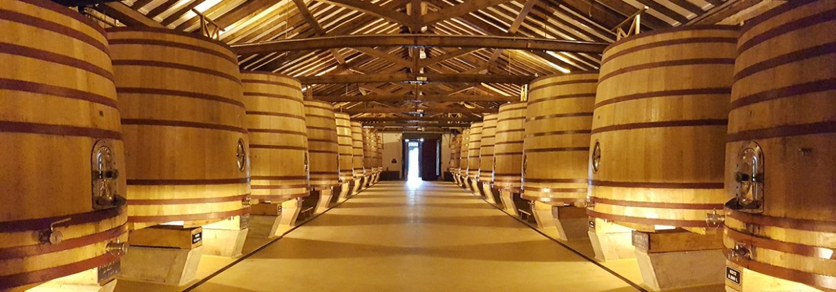 Wine cellar in a Rioja Winery